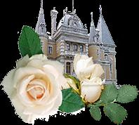 Историческая роза